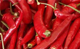 pimentas-vermelhas